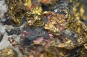 Chalcopyrite Copper iron sulfide mineral Macro. — Stock Photo
