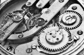 Cogwheels Inside Oldest Clockwork Macro — Stock Photo
