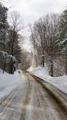 Western New York Winter — Stock Photo