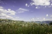 Summer in mountains — Stock Photo