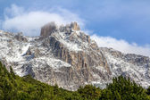 Ay Petri mountain in the snow close-up — Stock Photo