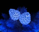 Pine cones and pine branches — Stock Photo