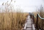 Gamla trä gångväg — Stockfoto
