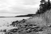 Landscape on shores of Lake Ladoga  — Stock Photo