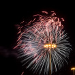Colorful fireworks in the night sky — Stock Photo #75022503