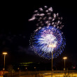 Colorful fireworks in the night sky — Stock Photo #75022527