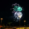 Colorful fireworks in the night sky — Stock Photo #75949895