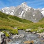 Mountain stream with Grand Jorasses glacier — Stock Photo #51908343