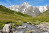 Mountain stream with Grand Jorasses glacier  — Stock Photo
