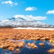 Spring in the Swedish mountains — Stock Photo #62537571