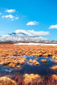 Spring in the Swedish mountains — Stock Photo
