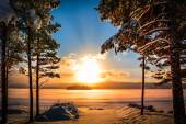 Sunset with a lake and pine trees in the foreground — Stock Photo