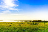 Overlooking the meadow lake and sky — Stock Photo