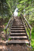 Staircase in the middle of nature — Stock Photo