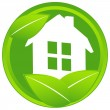 Home icon with leaf — Stock Vector #64981041