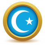 Gold Islam icon — Stock Vector #70737029