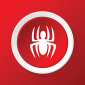 Spider icon on red — Stock Vector