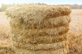 Straw stack in the field in the fall — Stock Photo