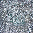 Snowfall before house window — Stock Photo #61820581