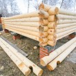 House under construction from pine logs — Stock Photo #67815031