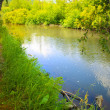 Summer landscape with river wood and sky — Stock Photo #70449283