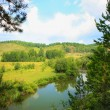 Summer landscape with river wood and sky — Stock Photo #70449285