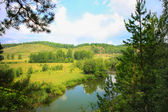 Summer landscape with river wood and sky — Stock Photo