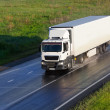 Truck moves on highway — Stock Photo #77414516