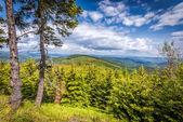 Pass Okraj, Kowary, Giant Mountains — ストック写真