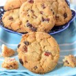 Dry cranberry cookies — Stock Photo #55329197