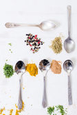Spoons and different spices — Stock Photo
