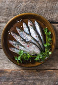 Smelts fish in the plate — Stock Photo