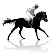 Jockey on horse — Stock Vector