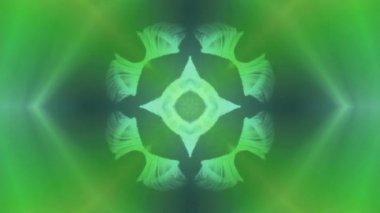 Green fur kaleidoscope — Stock Video