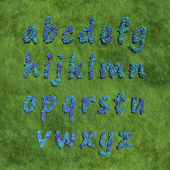 Alphabet small letter created by blue flowers — Stock Photo