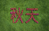 Autumn chinese text flower with grass background — ストック写真