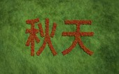 Autumn chinese text with grass background — Stockfoto