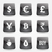 Currency Sign Icon Set — Stock Vector