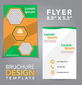 Flyer Brochure Design — Stock Vector