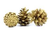 Three pinecone gold — Stock Photo