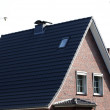 Roof of the house. — Stock Photo #54967159