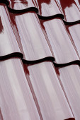 Roof tile — Stockfoto