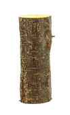 Wooden log firewood... — Stock fotografie
