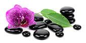 Spa konzept zen basaltsteinen! — Stockfoto