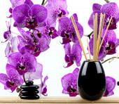 zen basalt stones and orchid isolated on white — Stock Photo