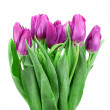 Bouquet of tulips on a white background — Stock Photo #61457187