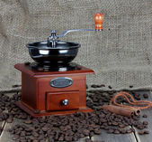 Manual coffee grinder with coffee beans and spices — Stock Photo