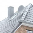 Roof of the house in winter frost — Stock Photo #63148183