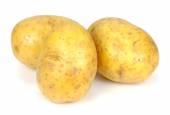 New potato isolated on white background close up — Stock Photo