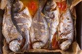 Seabass fish on a baking sheet — Stock Photo